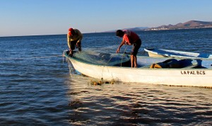 Fishermen in La Paz, Mexico