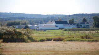 Highmoor farm MAFES field