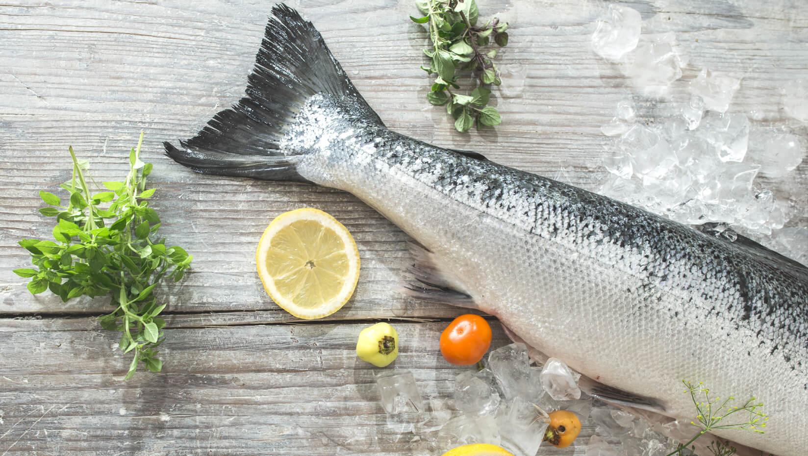 fish lemon food Sea Links