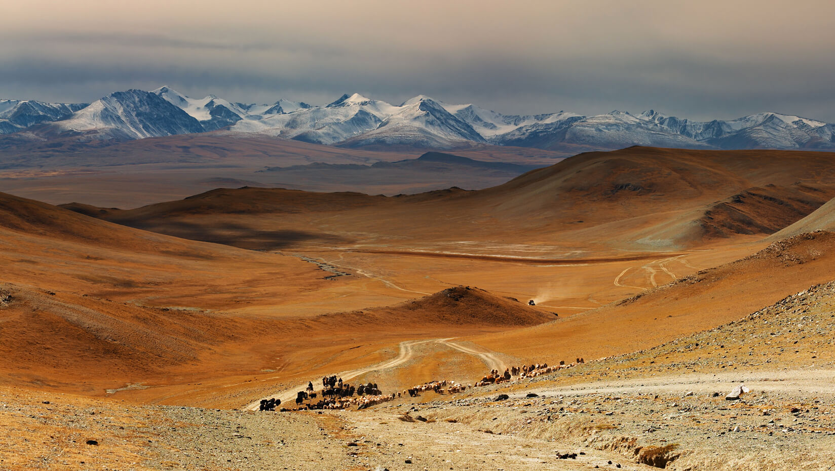 featured image for Putnam pursues climate clues in Mongolia ice fields