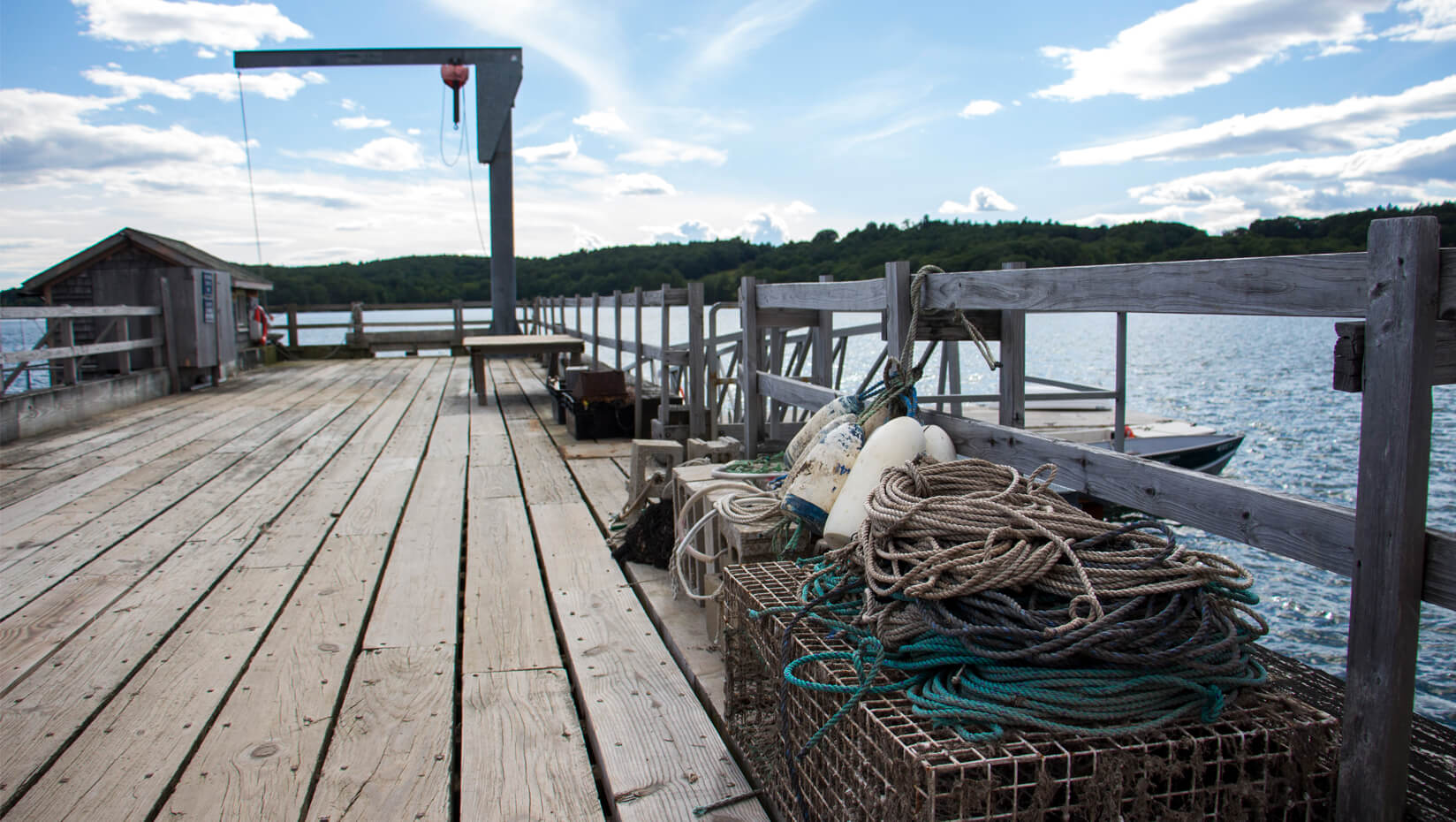 featured image for Ph.D. candidate examines effects of licensing on resilience of Maine's fisheries