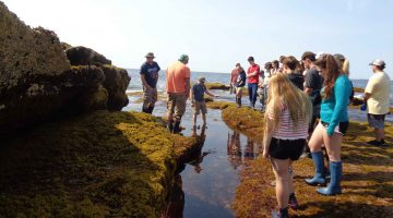 dmc bootcamp students tide pool