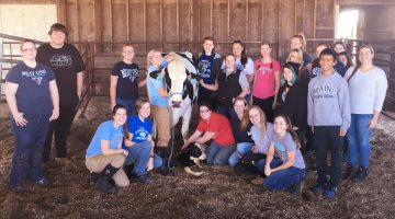 students calf dairy witter umad cows