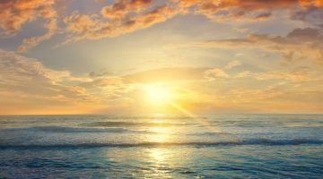 ocean temperature news feature