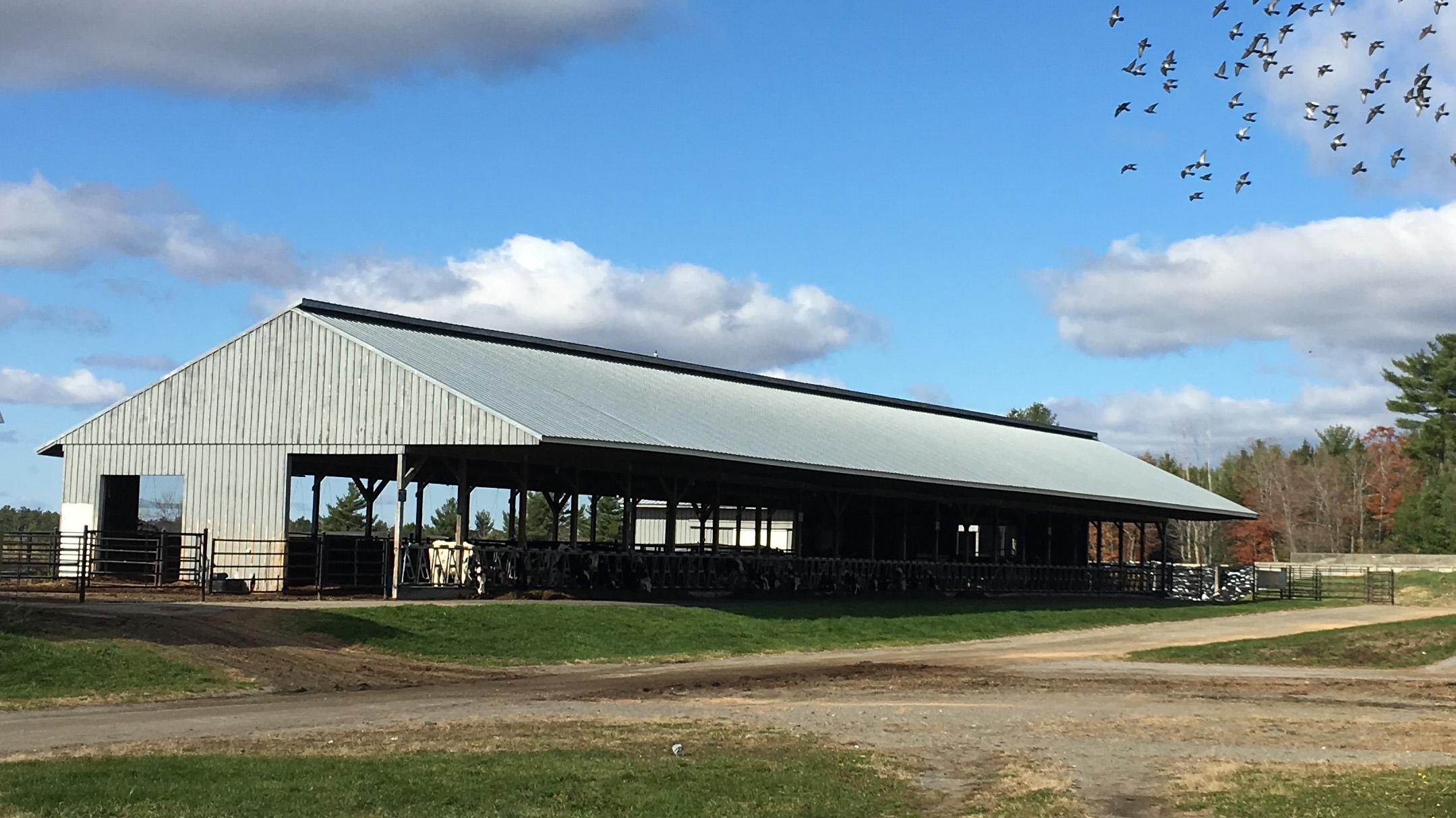 witter center dairy barn