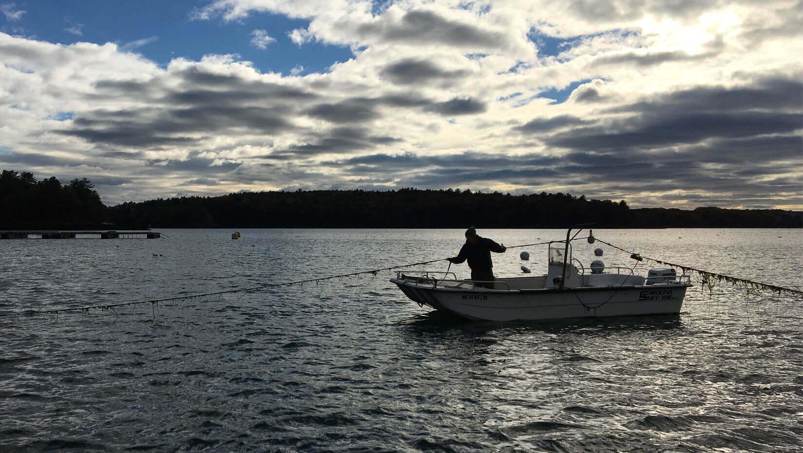 dmc boat marine fishing