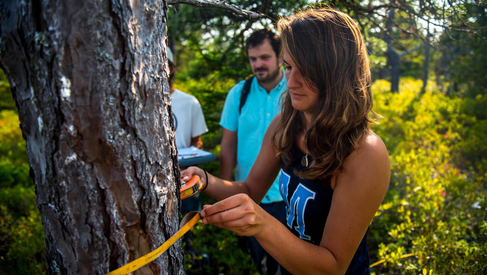 schoodic ees undergraduate research