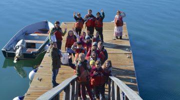 dmc k 12 education dock kids ocean