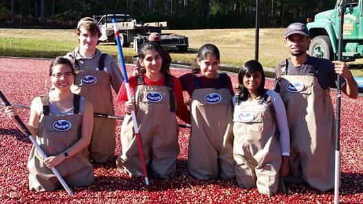 student food science cranberry ocean spray