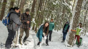 old town high school students forest snow winter header sarah nelson - web header