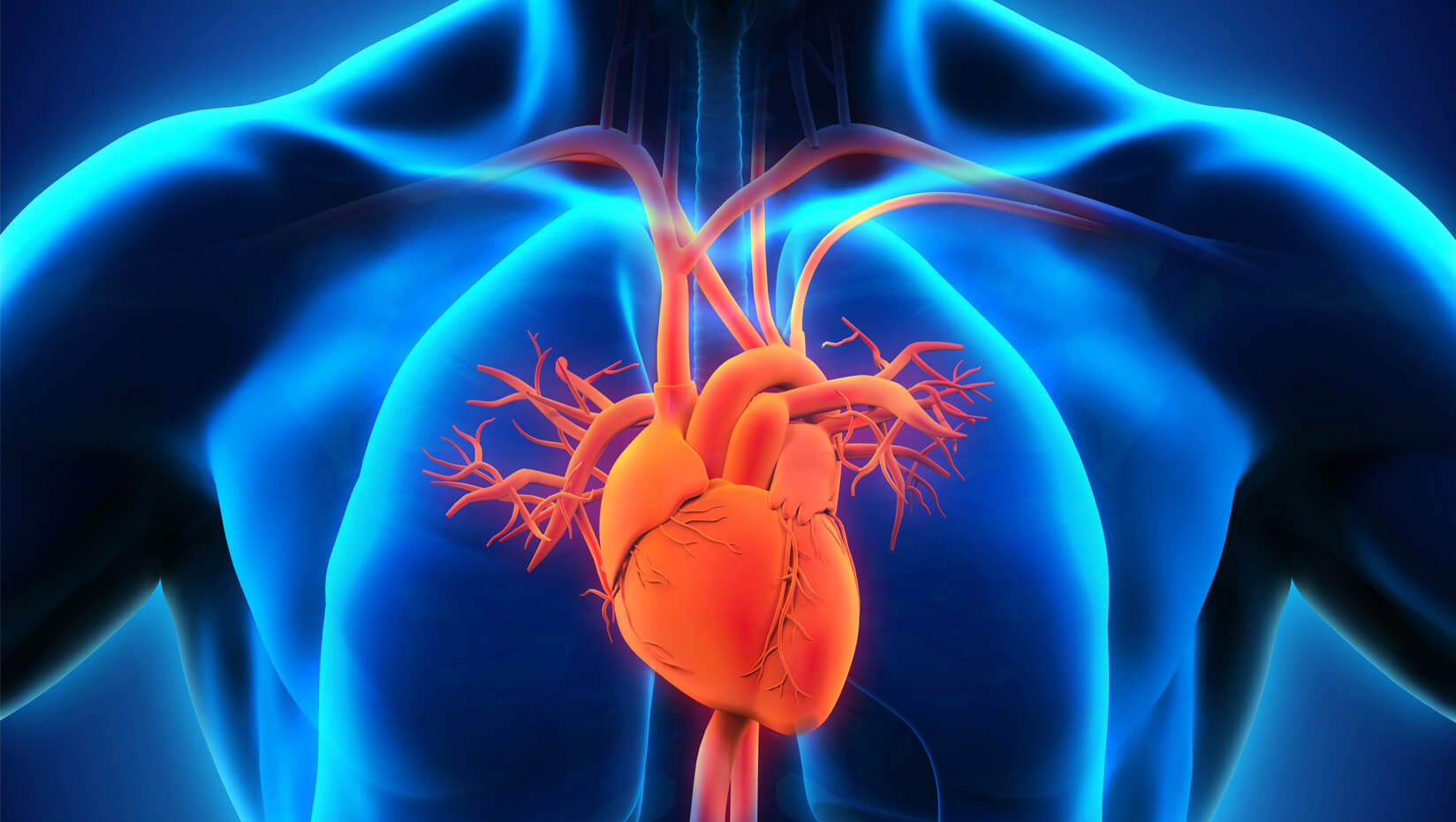 umaine heart health