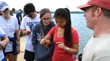 darling marine center umaine students ocean stem