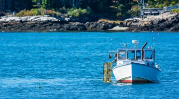 umaine lobster boat fishing ocean