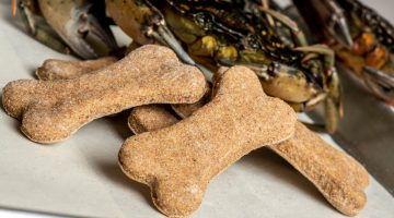 bone shaped dog biscuits