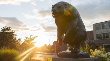 Statue of bear sculpture